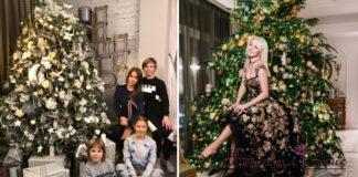 как украсили свои новогодние елки российские звезды