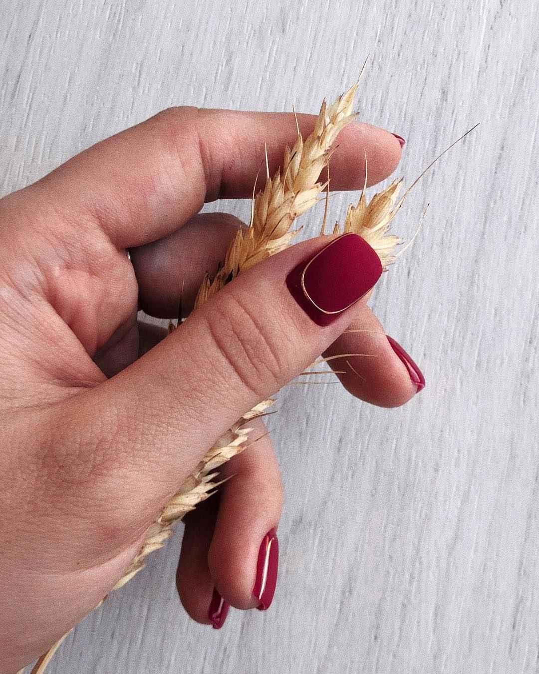 Матовый маникюр на короткие ногти с рисунком или декором фото_1