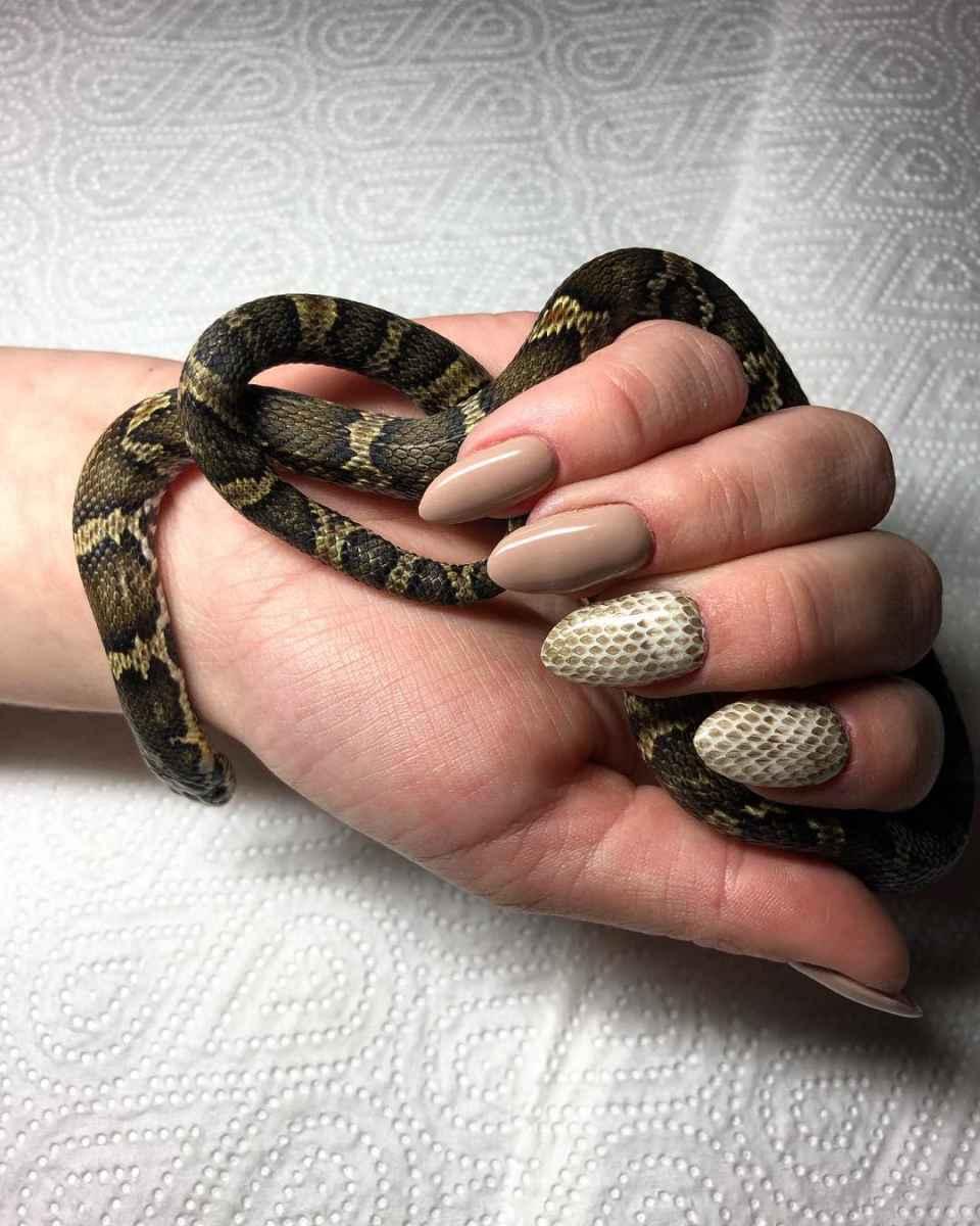 Красивый змеиный маникюр 2020 фото_61
