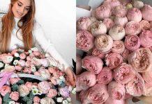лучшие сорта красных роз