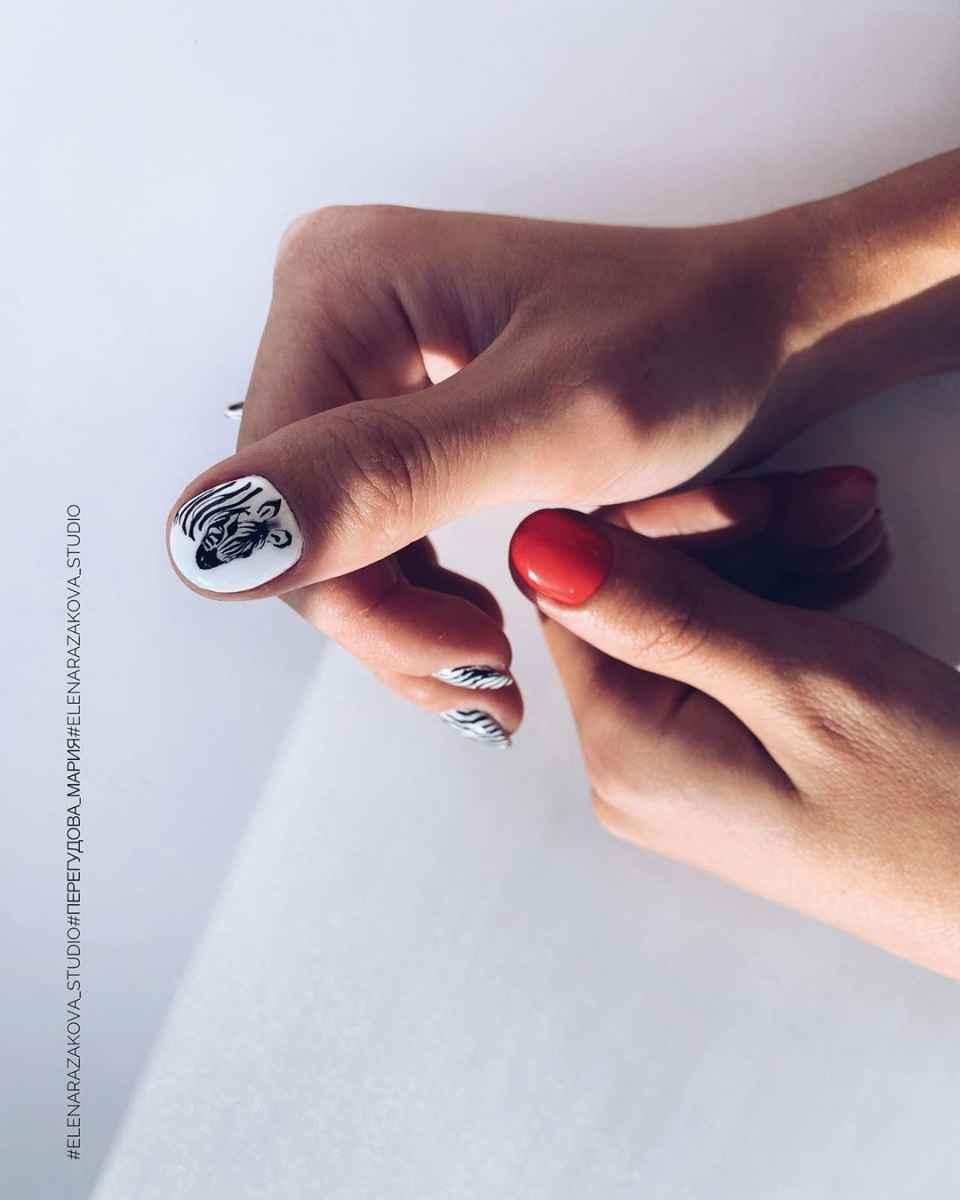 Зебра на ногтях фото_10