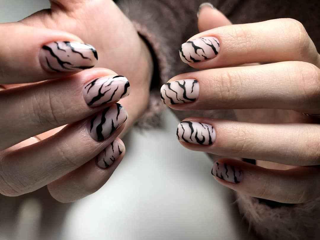 Зебра на ногтях фото_5