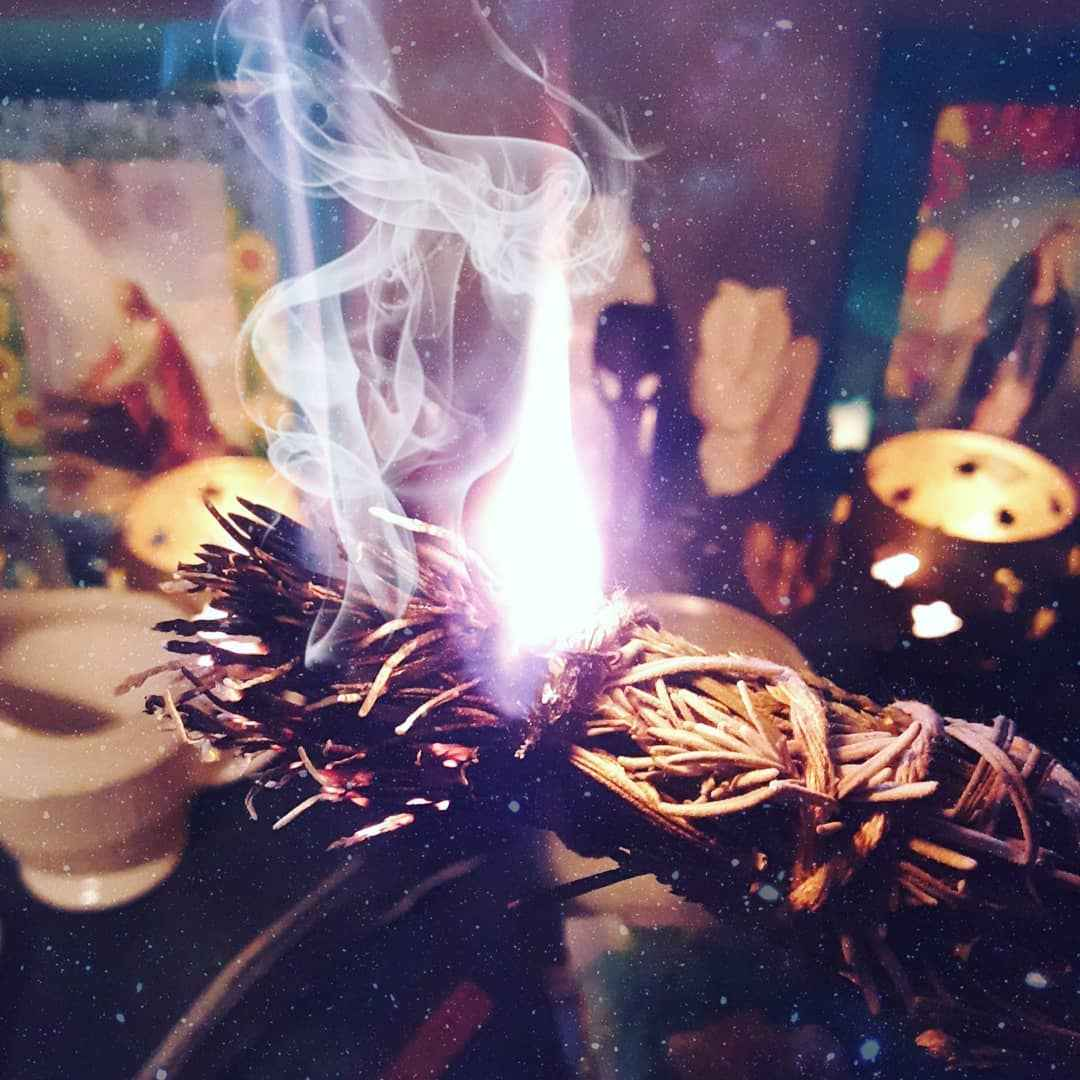 Магические свойства розмарина и 7 способов его использования в колдовстве